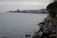 geneva 2011 481